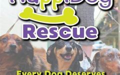 HappiDog Animal Rescue